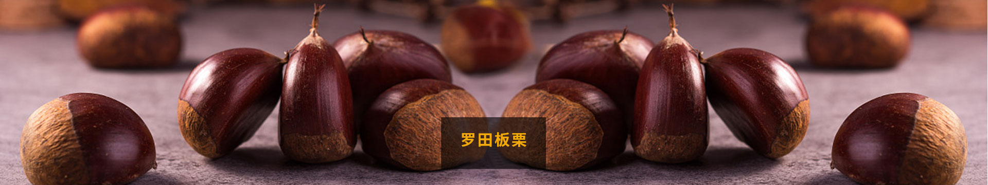 湖北板栗_关于弘福banner